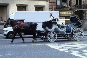 new-york-city-horse-drawn-carriage