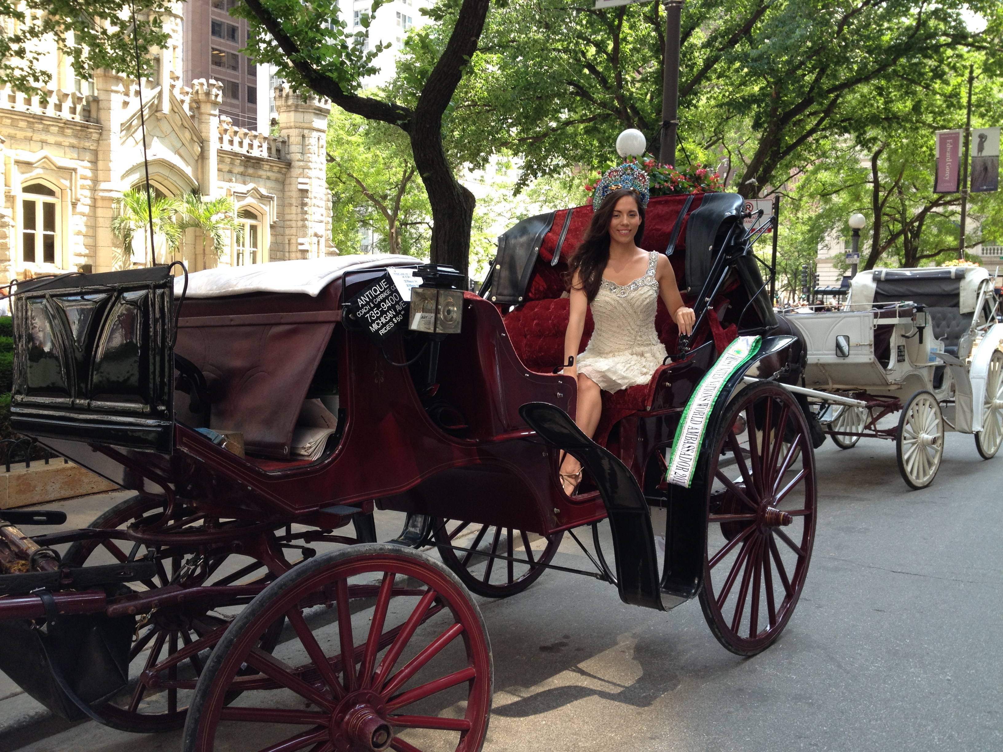 Save chicago 39 s horse drawn carriages keep chicago 39 s for How to build a carriage