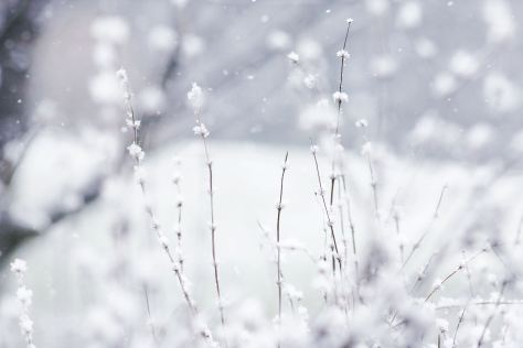 6862252-winter-backgrounds