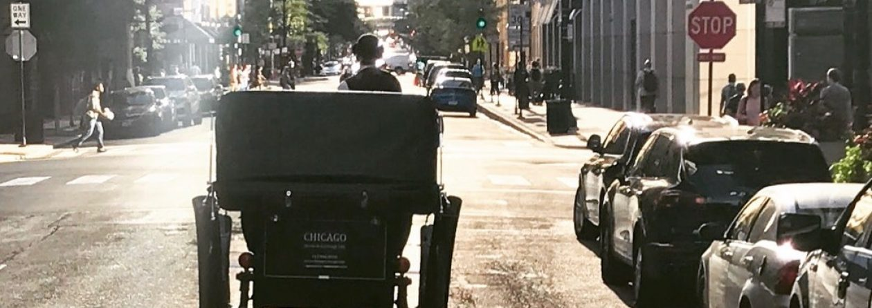 Save Chicago's Horse Drawn Carriages
